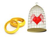 Love rings — Stock Photo
