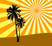 Two palms on sunset — Stock Photo