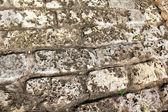Abstract ancient stone wall — Stock Photo