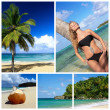 Caribbean collage — Stock Photo #5890944