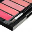 lipgloss paleti fırça — Stok fotoğraf
