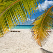Caribbean paradise — Stock Photo