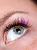 Green eye with creative artificial eye lashes — Stock Photo