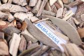 Mamajuana roots, macro — Stock Photo