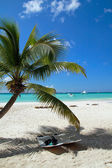 Tropical paradise — Stockfoto