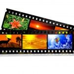 Film Strip — Stock Photo #6526652