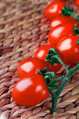 Tomatoes bunch closeup — Stock Photo