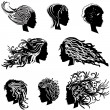 Head hair — Stock Vector