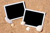 Conchas de mar con fotos sobre fondo de arena. — Foto de Stock