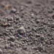 Cultivated gray dried soil, nature background - Stock Photo