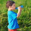 Little boy drinking gas water on green grass field - Stock Photo