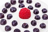 Mirtillo rosso lampone e blu con panna acida, sfondo di cibo — Foto Stock