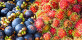 Rambutan and Mangosteen — Stock Photo