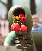 Gun and flowers — Stock Photo