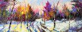Puesta de sol en madera de invierno — Foto de Stock