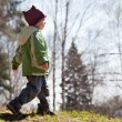 Child walking forest — Foto Stock