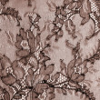 Macro brown lace texture — Stock Photo