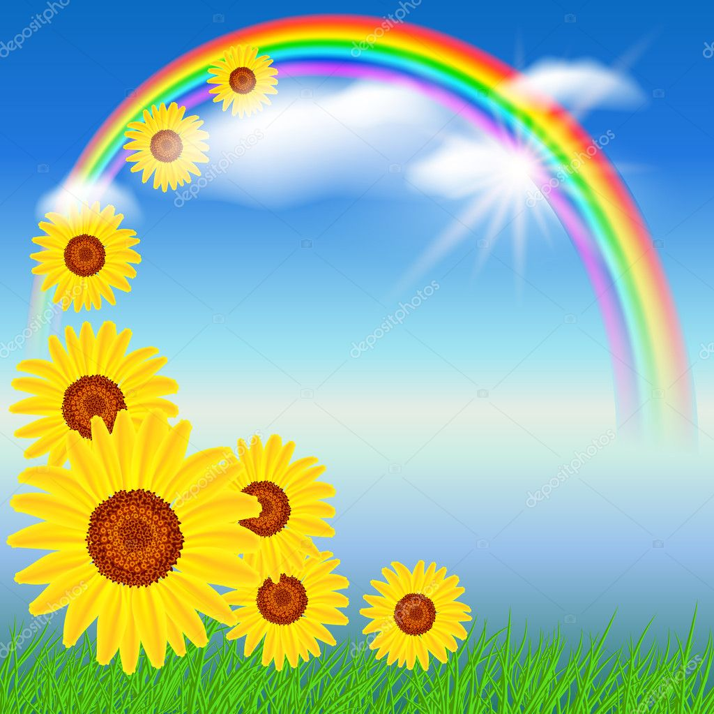 Sunflowers, grass  and rainbow — Stock Vector #5746570