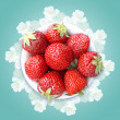Strawberry and flowers — Stock Photo