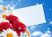 Daisies, roses and paper — Stock Photo