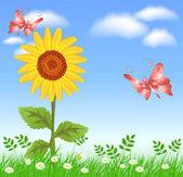Sunflowers and butterflies — Stock Vector