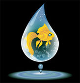 Fish in a drop of water — Stock Vector