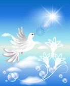 Dove in the clouds — Stock Vector