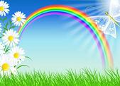 ромашки с зеленой травы и радуга — Cтоковый вектор