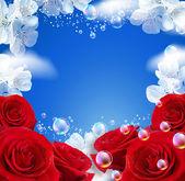 Hemel en rozen — Stockfoto