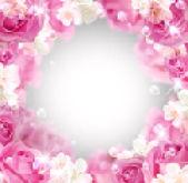 Róże i białe kwiaty — Wektor stockowy