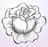 Rose ornament — Stock Vector