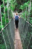 Puente del dosel — Foto de Stock