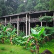 Longhouse in borneo — Stock Photo