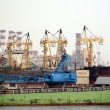 Ships and Cranes in Kaohsiung Harbor — Stock Photo #5705415