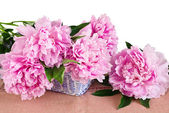 Pink peonies in basket — Stock Photo
