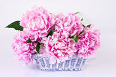 Basket of pink peonies — Stock Photo