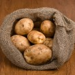 Harvest potatoes in burlap sack — Stock Photo