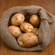 Stock Photo: Harvest potatoes in burlap sack