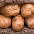 Harvest potatoes in burlap sack — Stock Photo #6713905