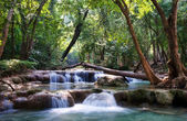 Beautiful waterfall cascades — Stock Photo