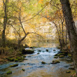 Stock Photo: Little stream in missouri