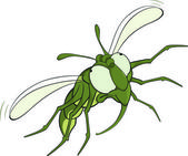 The scared green fly.Cartoon — Stock Vector
