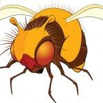 Bumblebee. Cartoon — Stock Vector #6474357