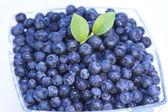 Bowl of fresh blueberries — Stock Photo