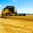 Combine harvester — Stock Photo #6089537