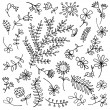 Sketch of floral elements for your design — Stock Vector #5553707