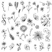 Sketch of floral elements for your design — Stock Vector