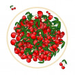 Plate with cherries for your design — Imagens vectoriais em stock