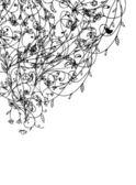 Floral bakgrund för din design — Stockvektor