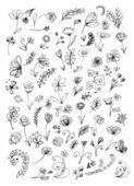 эскиз цветочных элементов для вашего дизайна — Cтоковый вектор